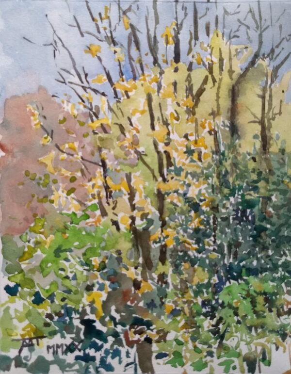 aquarel aquarelleren artis oktober 2020 joost de bie
